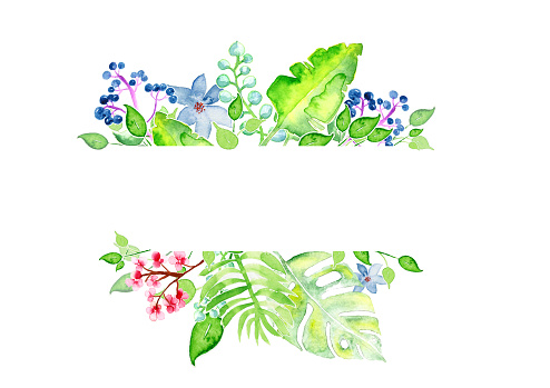istock beautiful flowers, watercolor on paper 1130920237