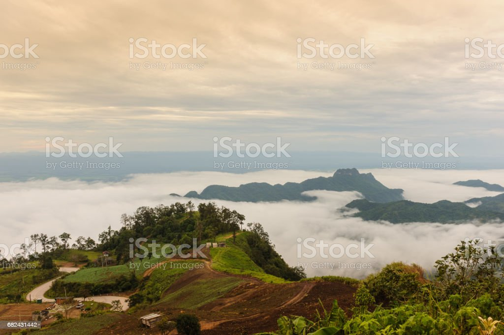Beautiful fog and cloud on  Phu Thap Boek, Thailand. royalty-free stock photo