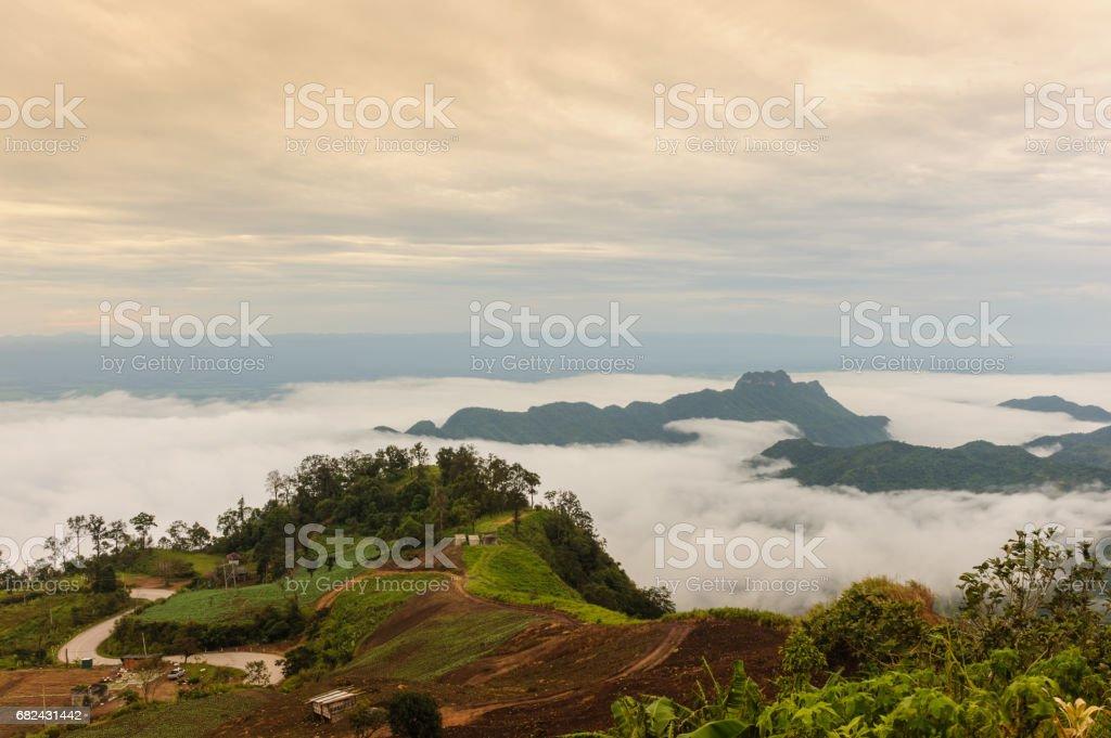 Beautiful fog and cloud on  Phu Thap Boek, Thailand. 免版稅 stock photo