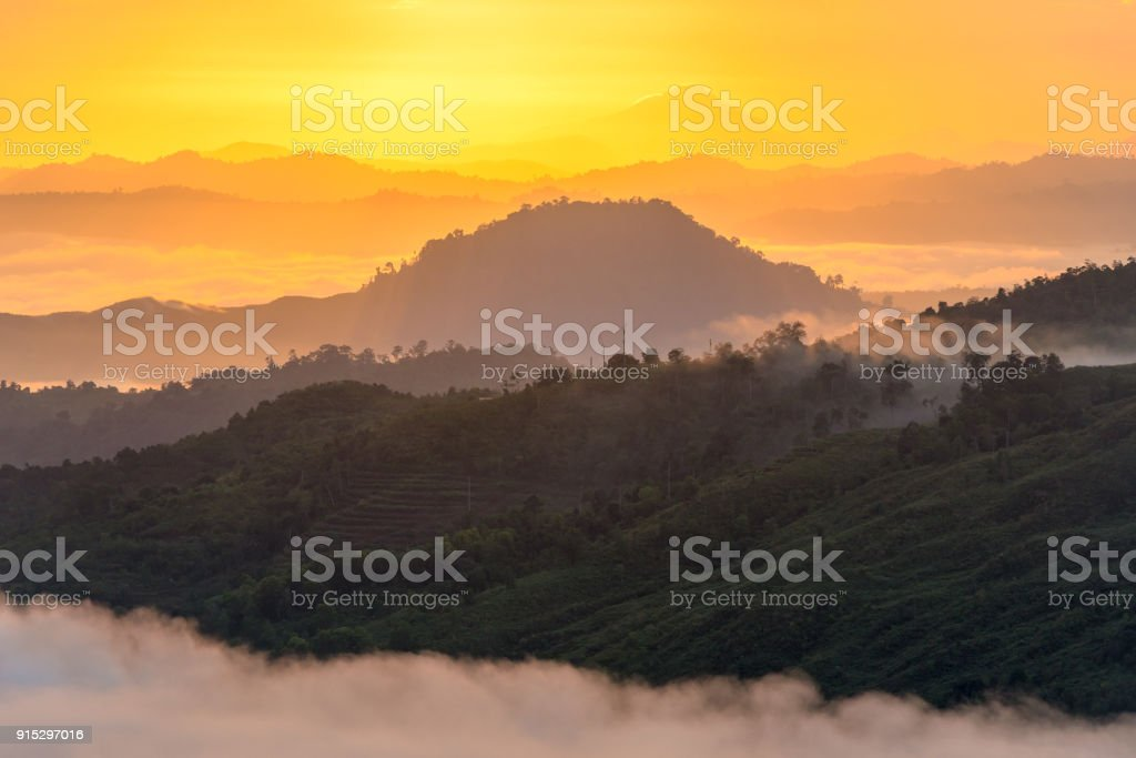 beautiful foggy hills at sunrise stock photo