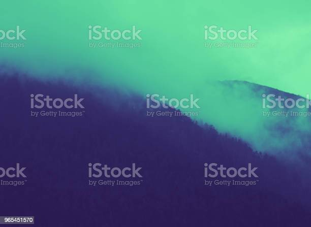 Foto de Belas Montanhas Místicas Nebulosos Nuvens De Neblina O Pine Árvore Mística Madeira De Manhã Europa Misteriosa Paisagem Alpina e mais fotos de stock de Assustador