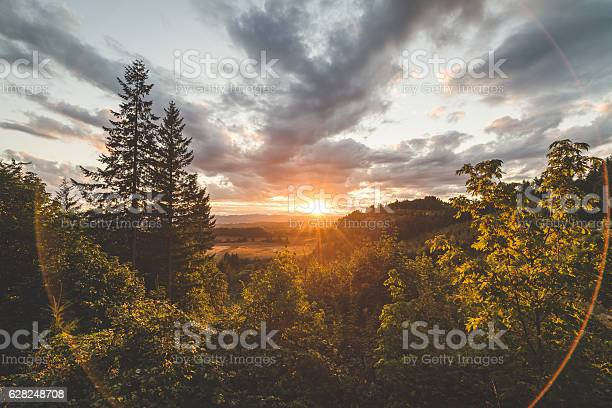 Photo of Beautiful Forest and Valley Sunset