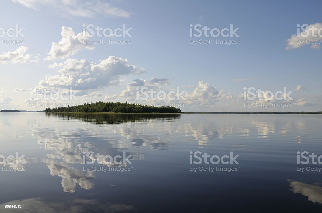 Beautiful forest at the lake's edge royalty-free stock photo