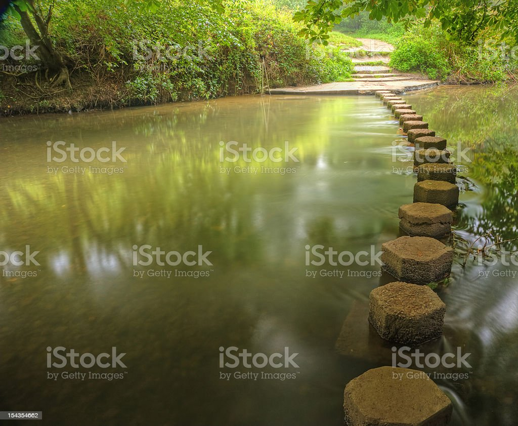 Beautiful forest scene of enchanted stream flowing through foliage stock photo