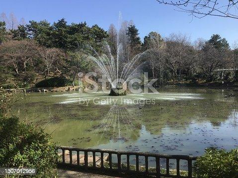 istock Beautiful fountain in Yobitsugi Park 1307012956