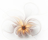 Beautiful fractal delicate golden beige flower on a white background