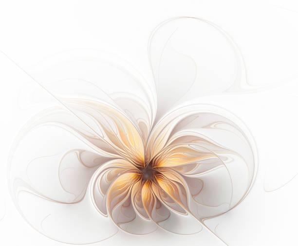 mooie fractal delicate gouden beige bloem - fractal stockfoto's en -beelden