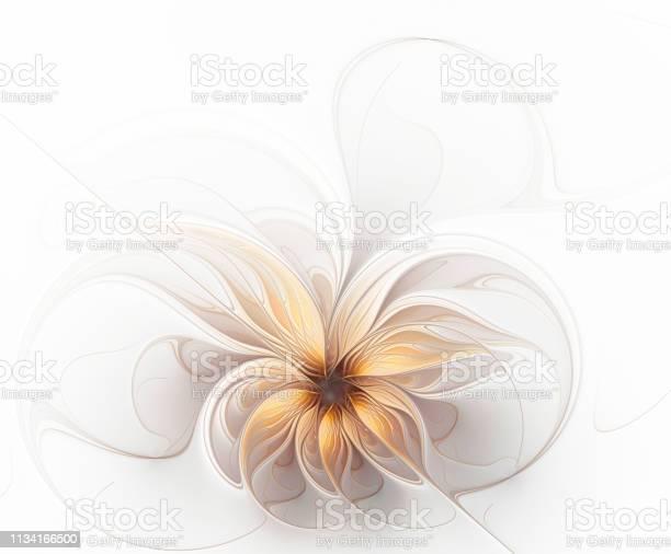 Foto de Flor Bege Dourada Delicada Do Fractal Bonito e mais fotos de stock de Abstrato