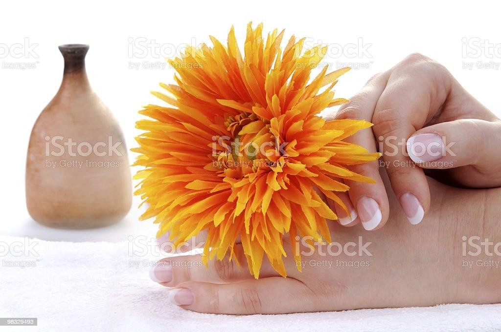아름다운 프랑스 매니큐어 및 꽃 royalty-free 스톡 사진