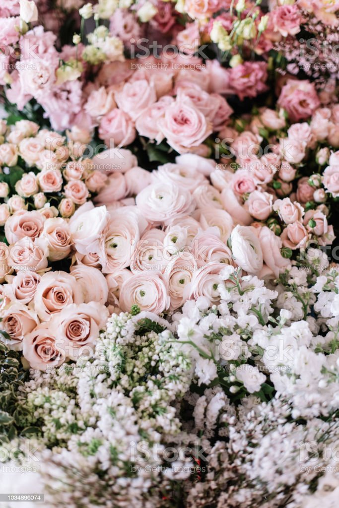 Beautiful fresh blossoming flower bed of roses, ranunculus,...
