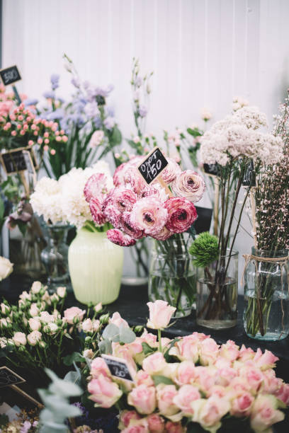 Beautiful fresh blossoming flowers at the florist shop shelves in the picture id996172988?b=1&k=6&m=996172988&s=612x612&w=0&h=3pvli5zlr6weqfahmhvfe7dkzzadthauz4ztmvc4xd8=