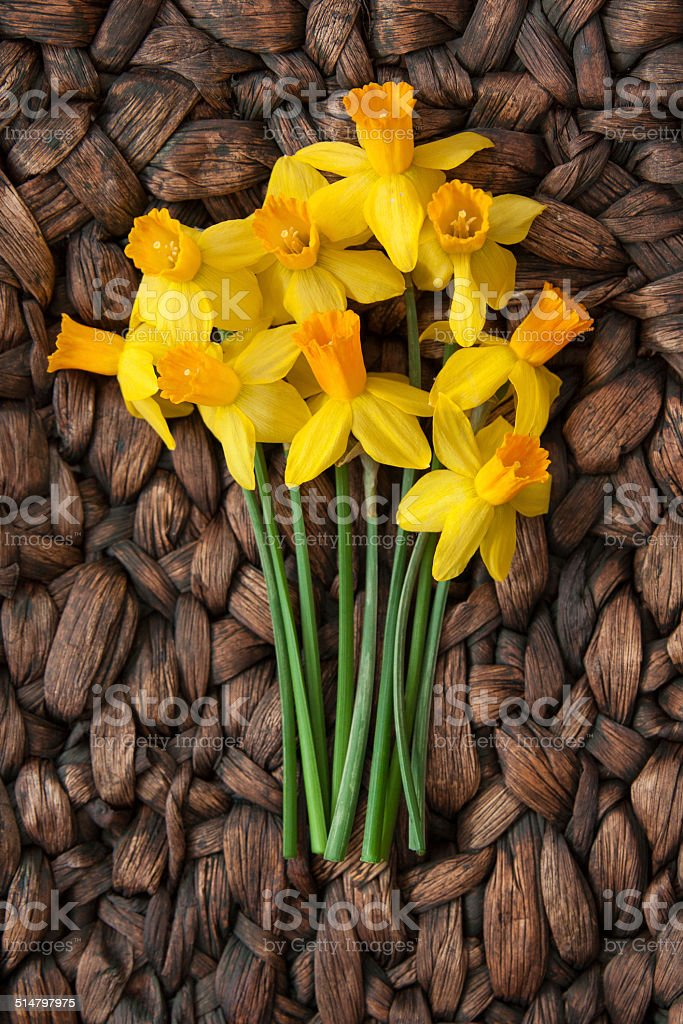 Beautiful, Fresh Daffodils on Contrasting Woven Surface stock photo