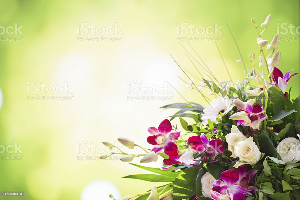 Beautiful Fresh Flower Bouquet With Nature Background Stock Photo ...