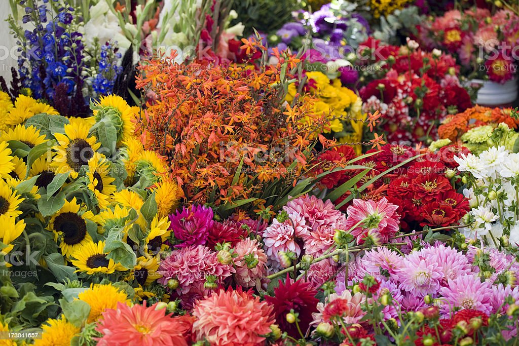 Beautiful fresh flowers at an outdoor market stock photo
