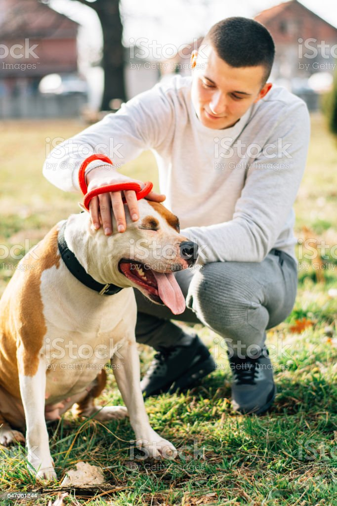 Friendship between dog and man.