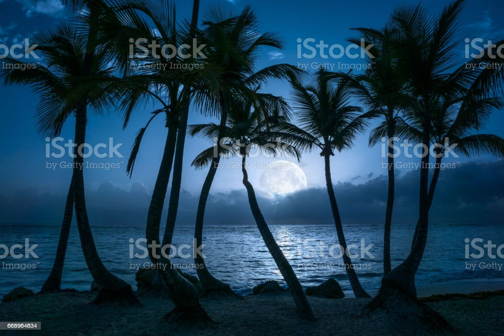 Beautiful full moon reflected on the calm water of a tropical beach stock photo