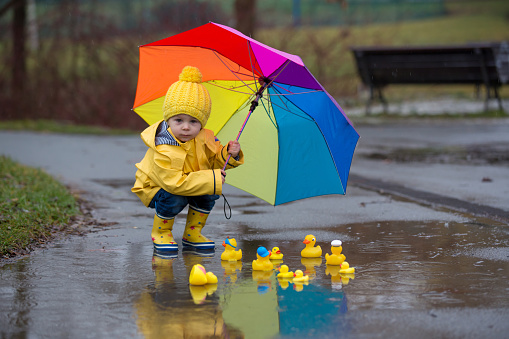 istock Beautiful funny blonde toddler boy with rubber ducks and colorful umbrella, jumping in puddles and playing in the rain 1198860114