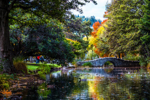Beautiful garden in autumn with colorful trees. stock photo