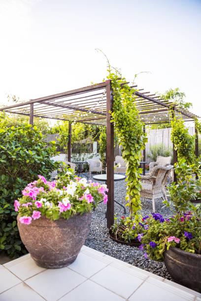 Beautiful Garden Patio Setup with Growing Creepers stock photo