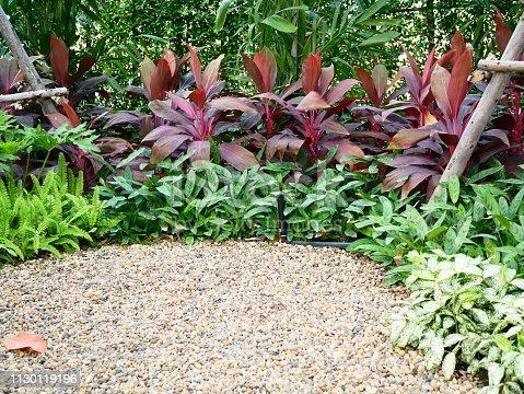 909806032istockphoto Beautiful Garden 1130119196