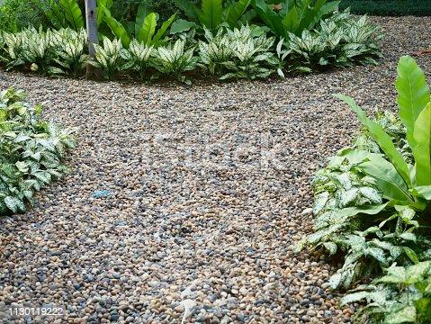 909806032istockphoto Beautiful Garden 1130119222