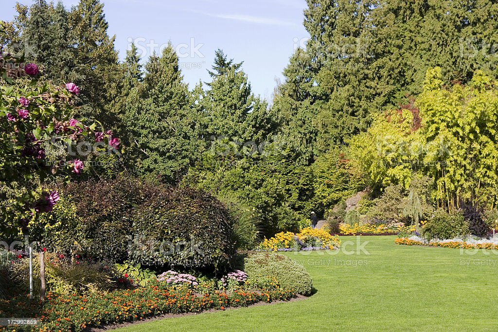Beautiful garden royalty-free stock photo