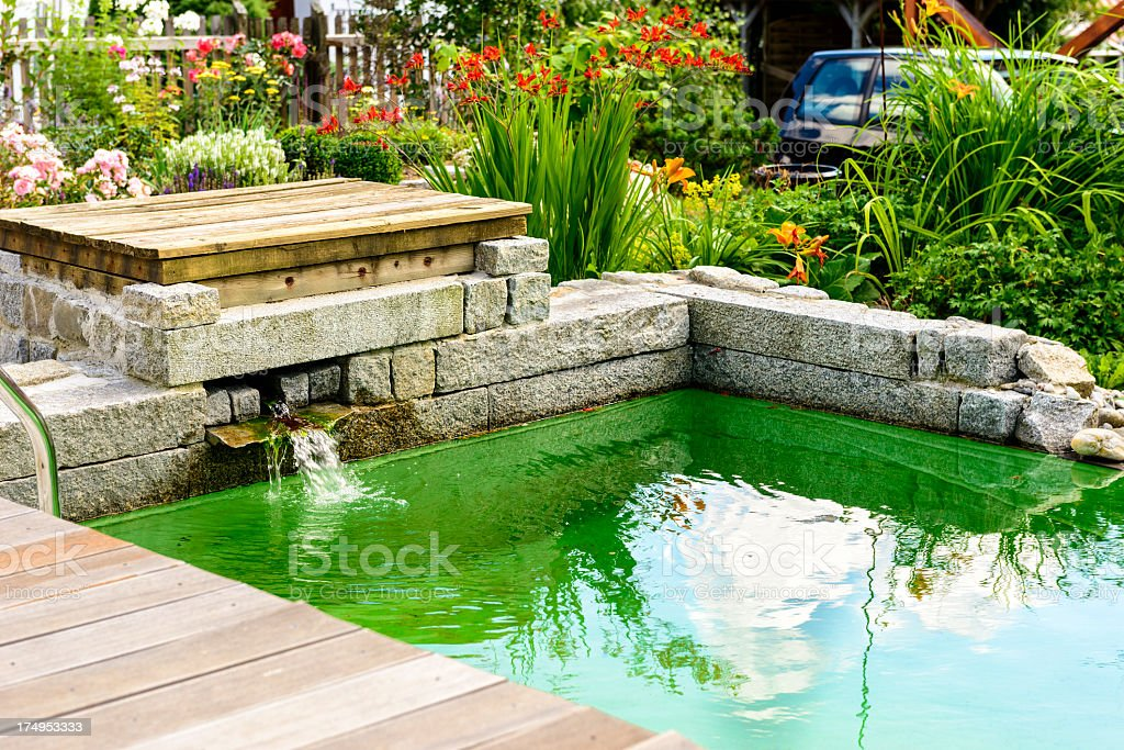 Beautiful garden pool wooden patio flowers turquoise water stock photo