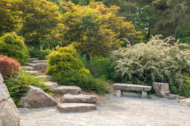 Schöner Garten mit Sprungbrett – Foto