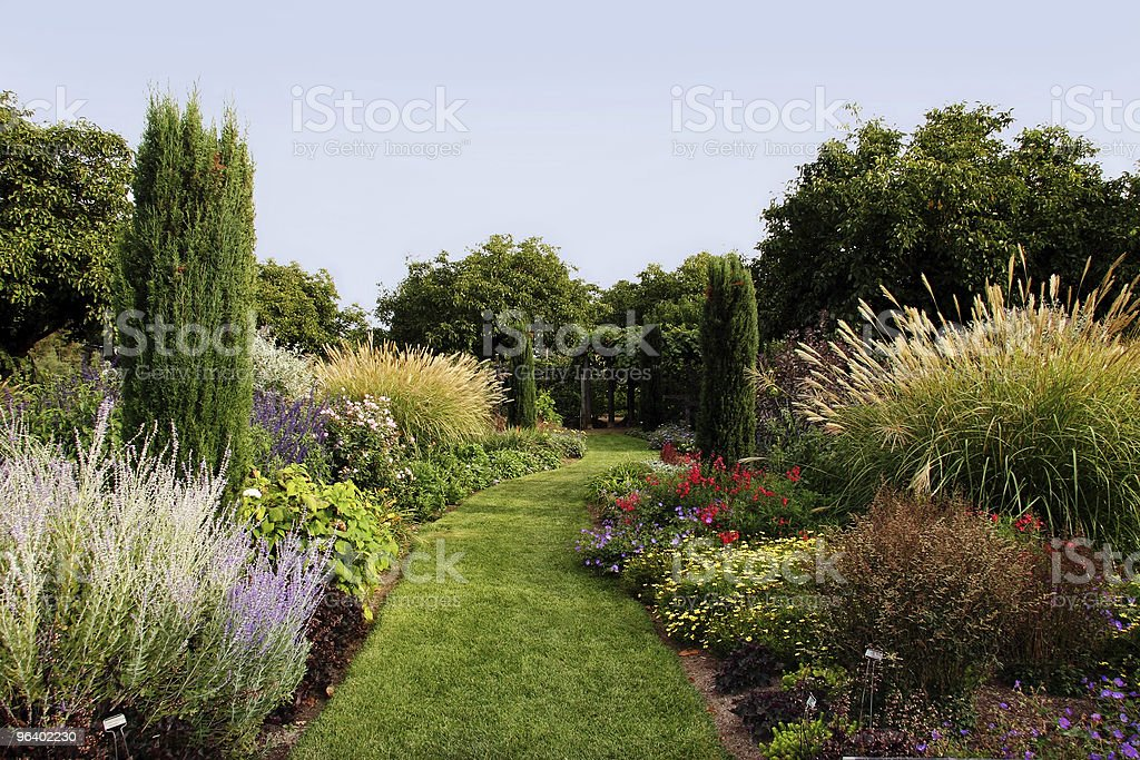 Beautiful garden with a variety of plants royalty-free stock photo