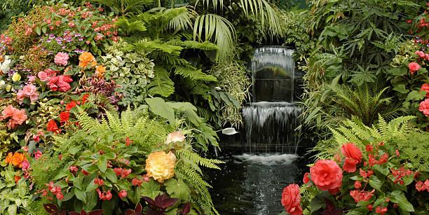 o garden - jardim do eden - fotografias e filmes do acervo