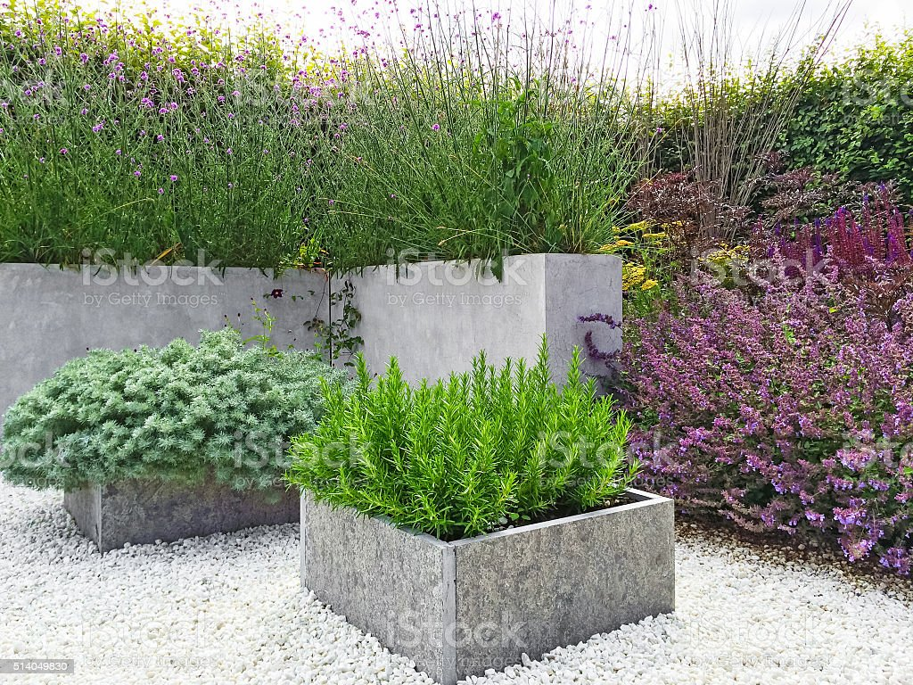 Beautiful garden with contemporary design stock photo