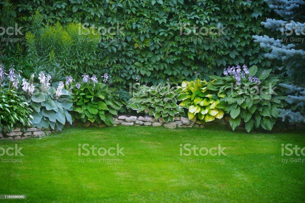 Beautiful garden with green grass - Royalty-free Ajardinado Foto de stock