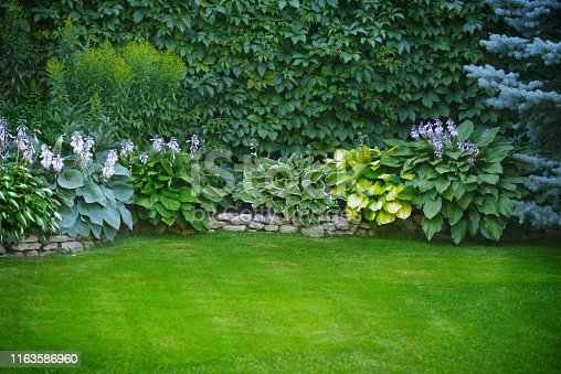 istock Beautiful garden with green grass 1163586960