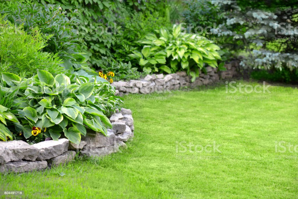 Beautiful garden with green grass stock photo