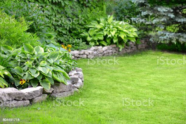 Photo of Beautiful garden with green grass