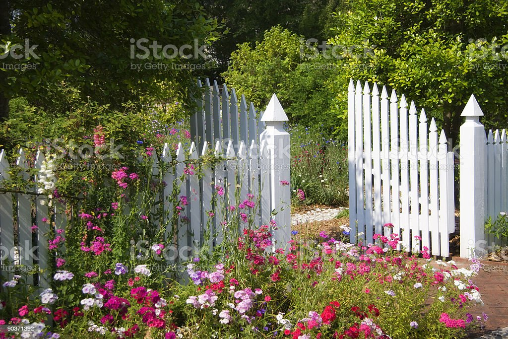 Beautiful Garden with open white gate stock photo