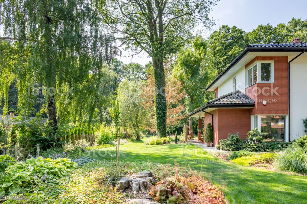Beautiful Garden With Trees And Shrubs Next To A Big House Real