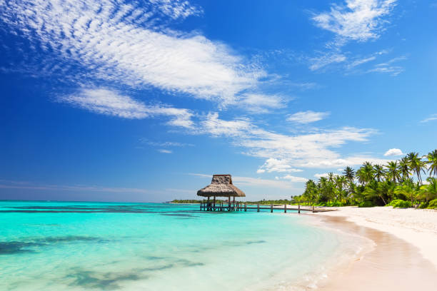 Beautiful gazebo on the tropical white sandy beach picture id1011254534?b=1&k=6&m=1011254534&s=612x612&w=0&h=zvlm65vind fj2umvwuf8rvyrym4ifpsxbpjdj y18g=