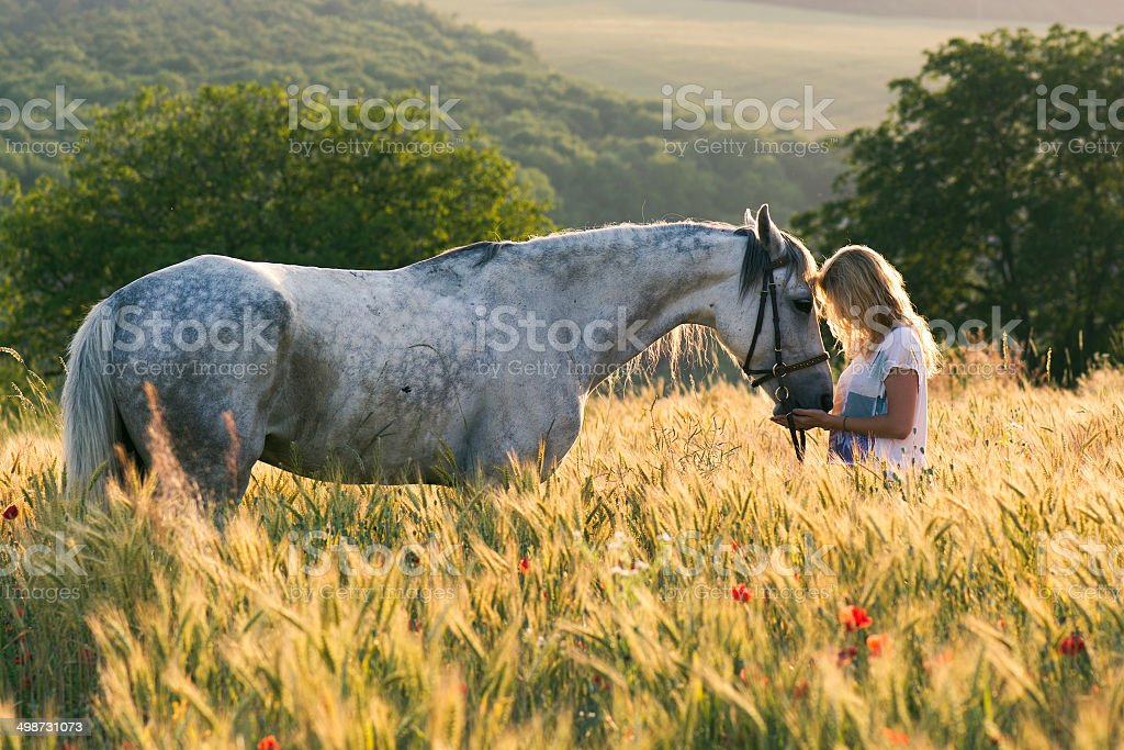 Beautiful girl and horse outdoors stock photo