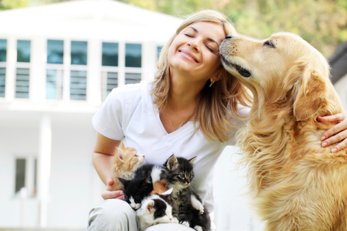 Beautiful girl are enjoying outdoor with group of little cats and dog.