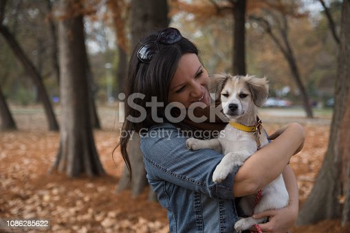 istock Beautiful girl holding little dog in the park 1086285622