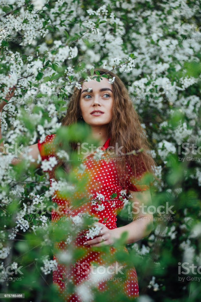 Ein schönes Mädchen in einem Kleid steht neben einem blühenden Kirschbaum bus - Lizenzfrei Attraktive Frau Stock-Foto