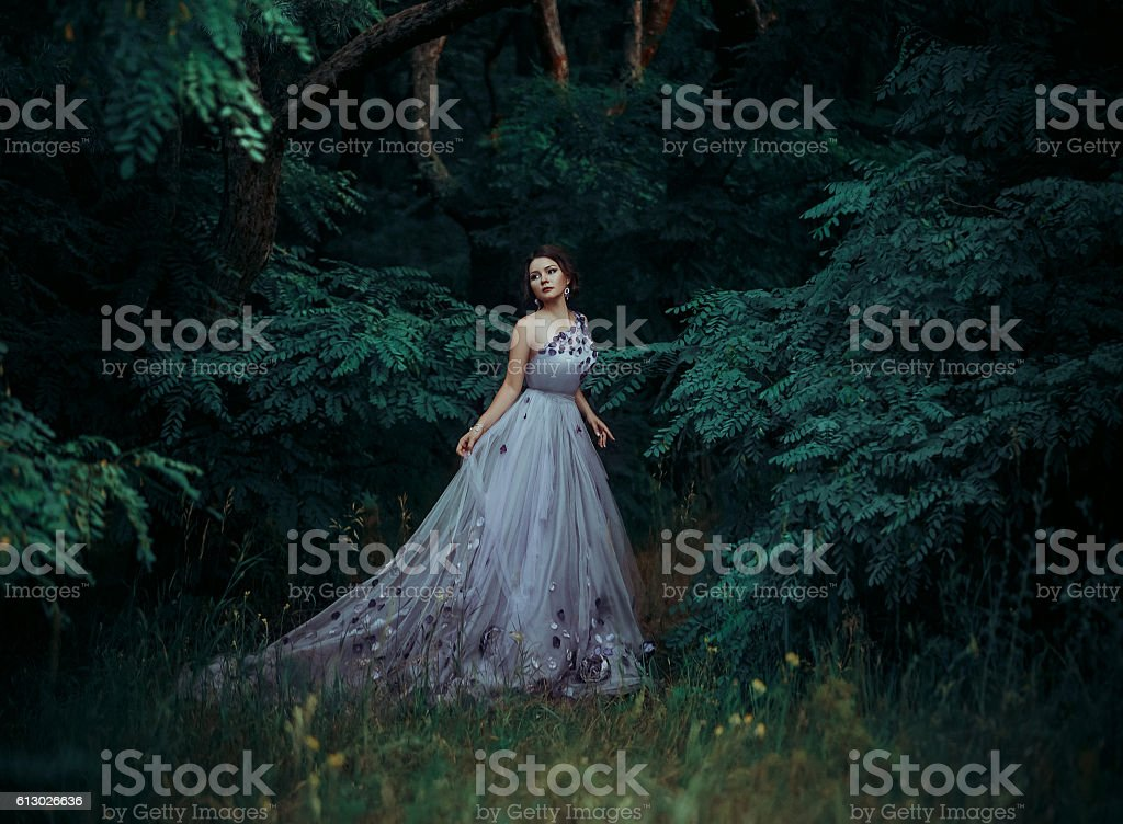 Beautiful girl in a long dress, walk among the trees. stock photo