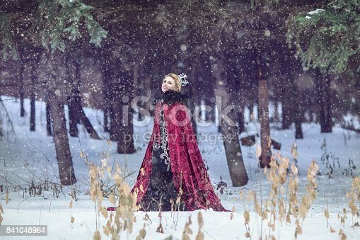 Beautiful princess in a red cloak and crown in a winter forest