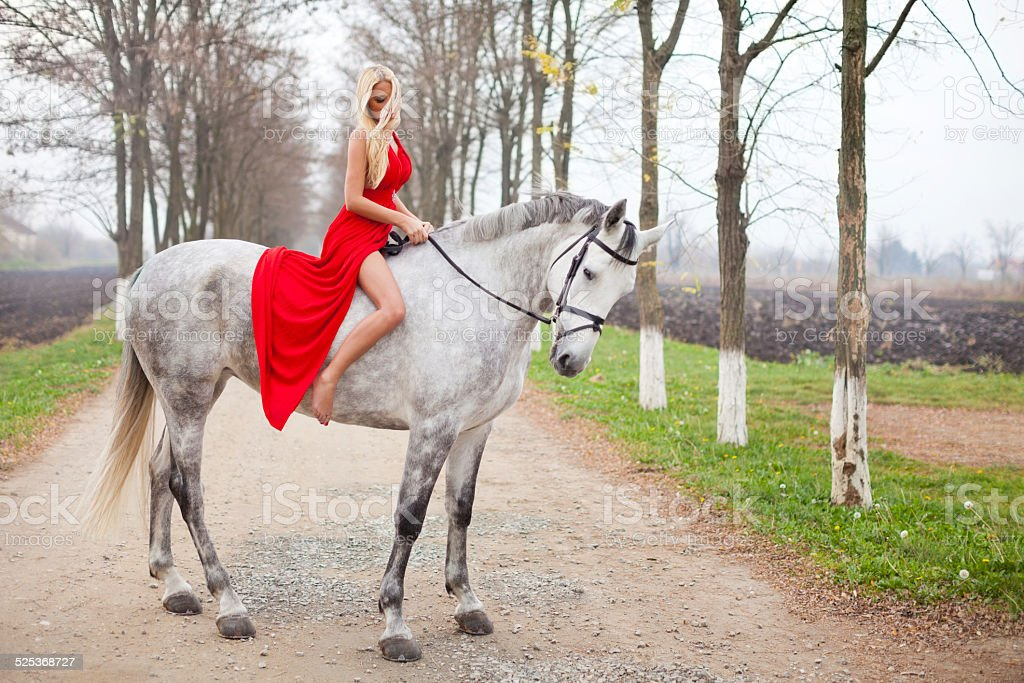 Beautiful girl in a red dress riding on white horse stock photo