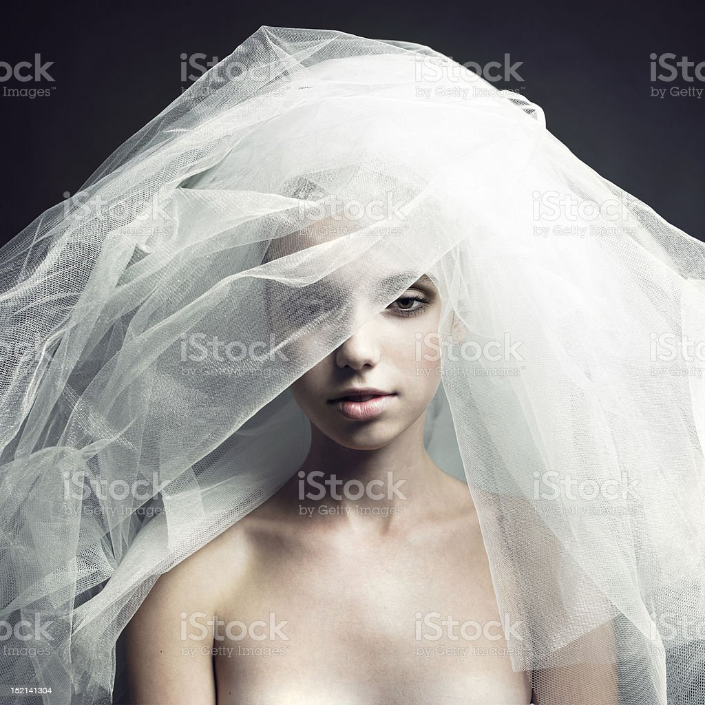 Beautiful girl in a veil royalty-free stock photo