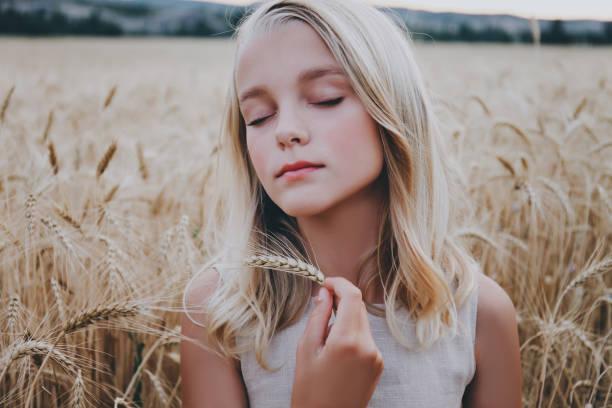 Beautiful girl in a wheat field. stock photo