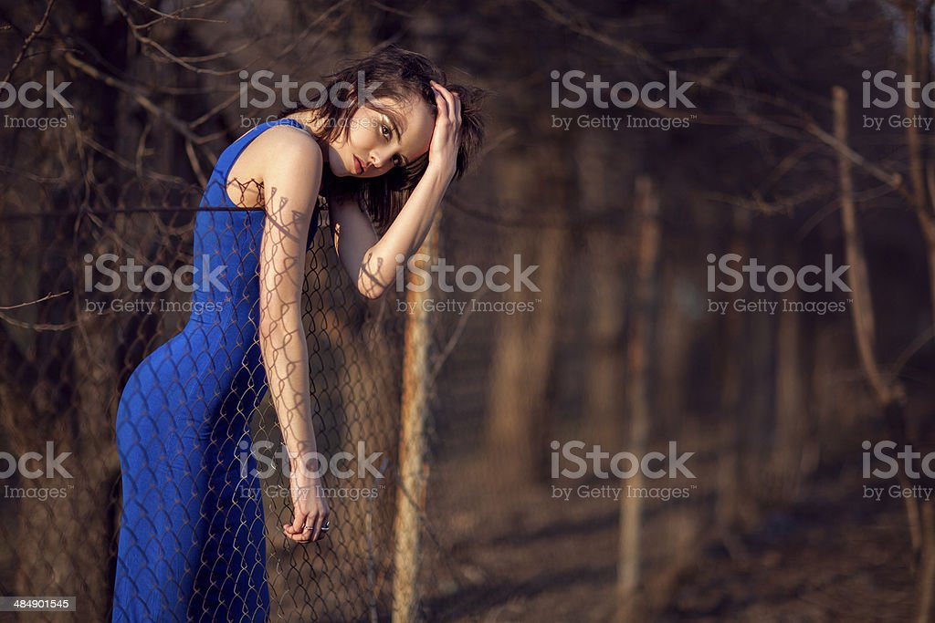 Beautiful girl in blue evening dress. royalty-free stock photo