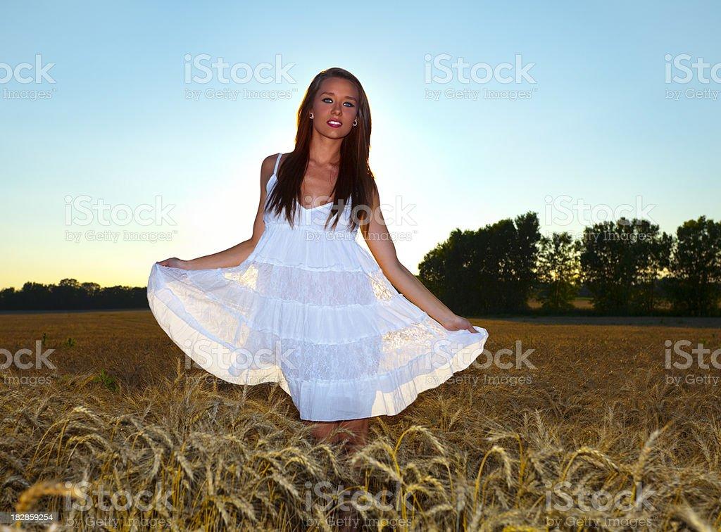 Beautiful Girl in Wheat Field Back-Lit By Setting Summer Sun Beautiful Girl in Wheat Field Back-Lit By Setting Summer Sun Adult Stock Photo