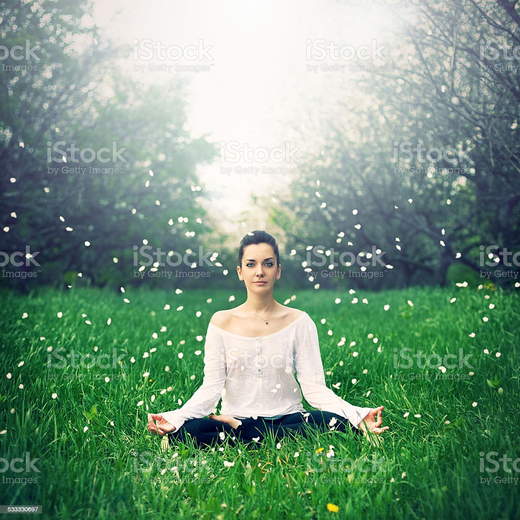 beautiful girl is engaged in yoga in the forest stock photo